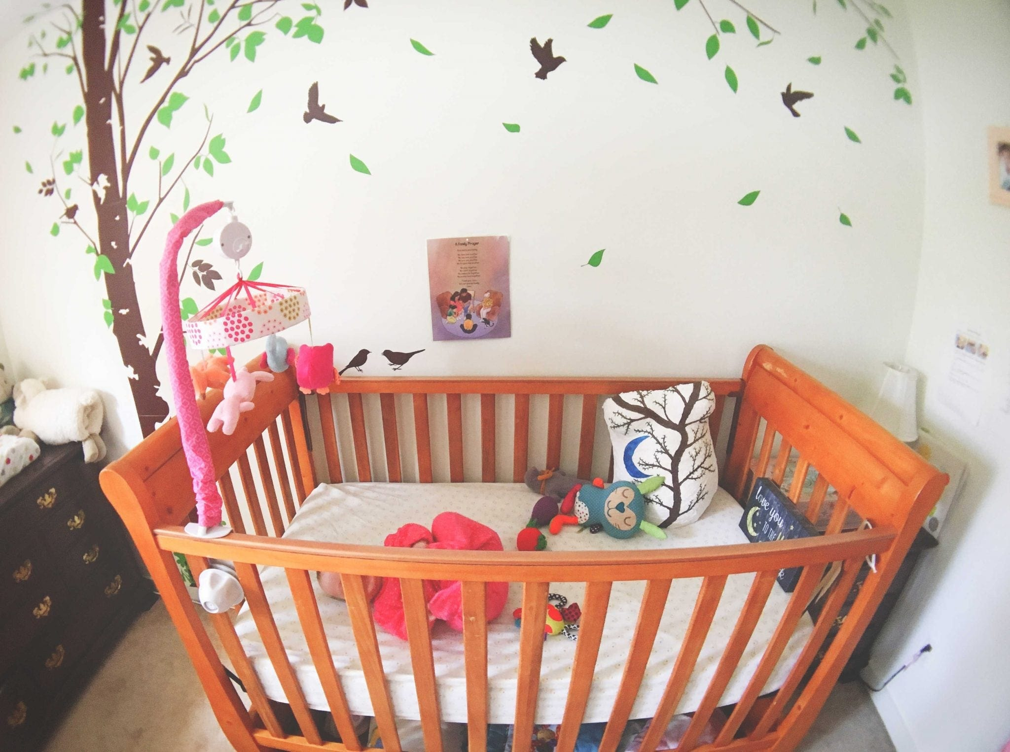 Luna's Secondhand Crib & Dressers - usually big ticket items