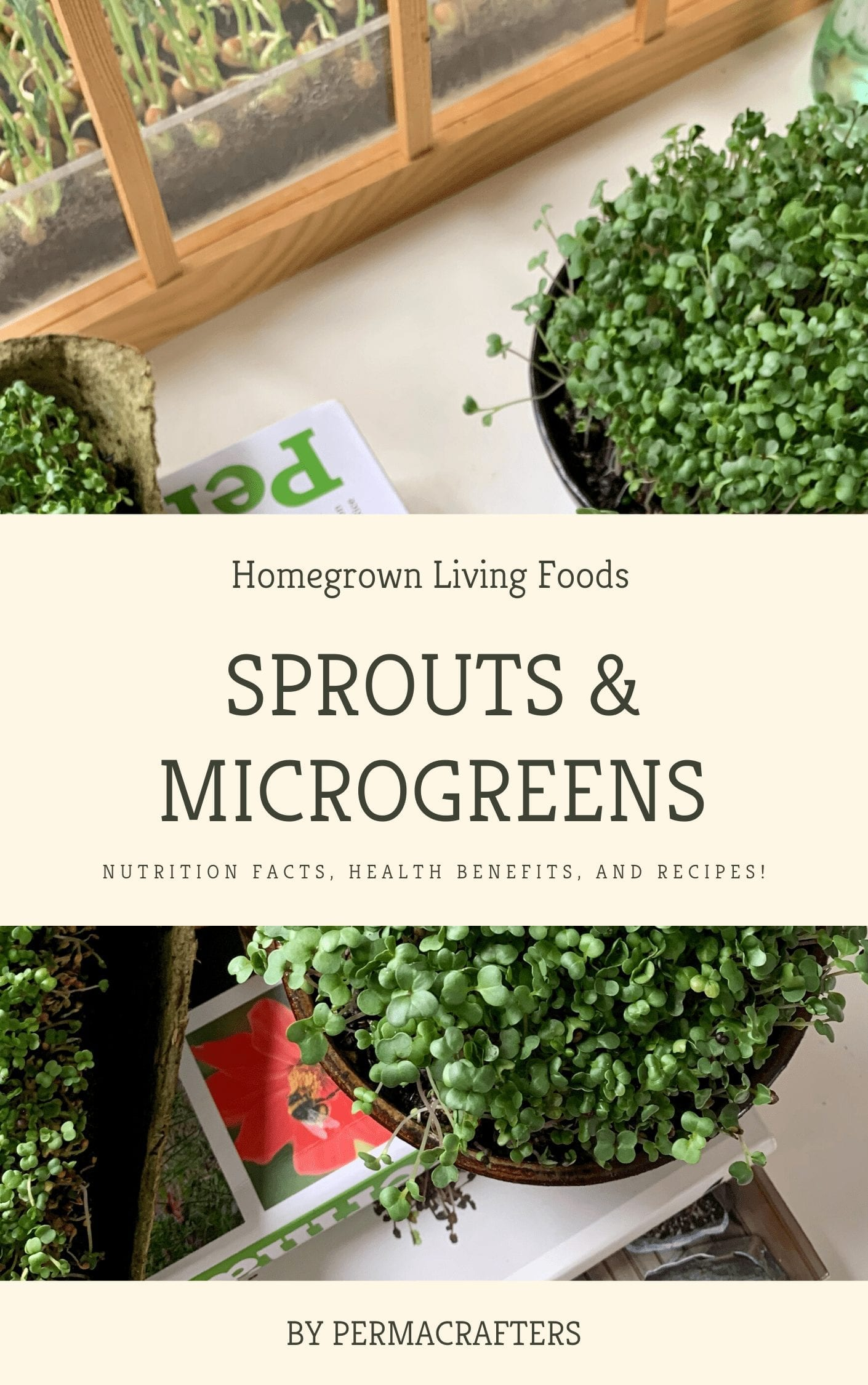 Sprouts & Microgreens Book Cover